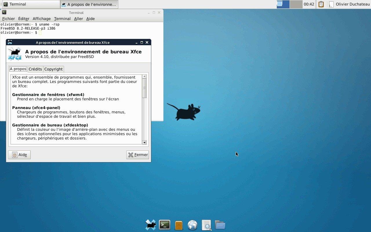 Standard Ubuntu Server Gui: